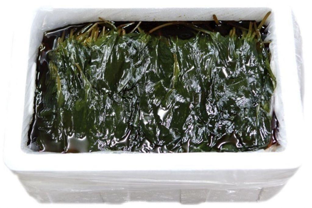 Bulk Sanmaneul Myeong-yi (Mountain Garlic Leaf) 15kg - Dokdo Trade