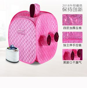 Portable Steam Sauna with Generator Capacity of 2L 1000W