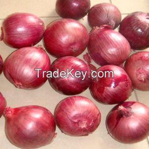 GAP Fresh Red Onions For Sale, Yellow Onion Fresh, 10KG White Onion