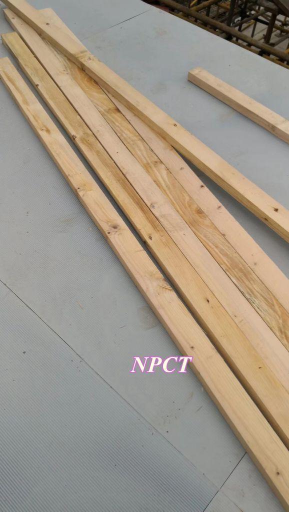 Factory Price Convenient Reusable Aluminum Construction Formwork for Concrete Casting NPCT