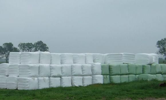 Grass silage packing film
