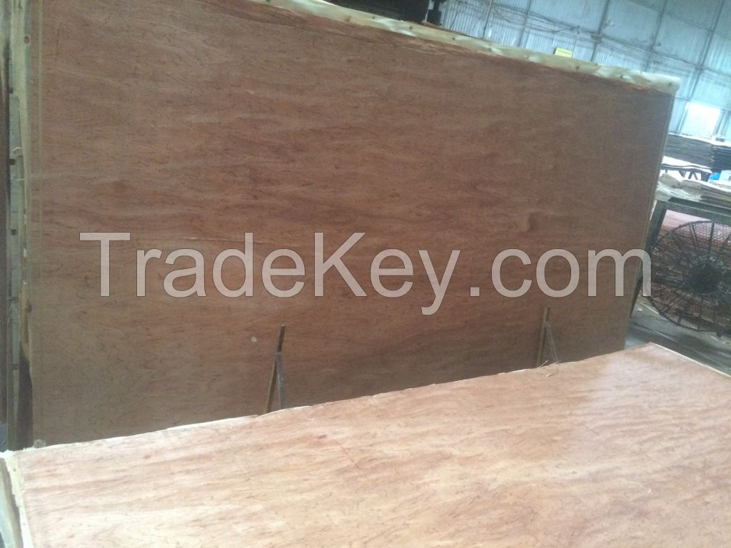 Plywood for packing industry