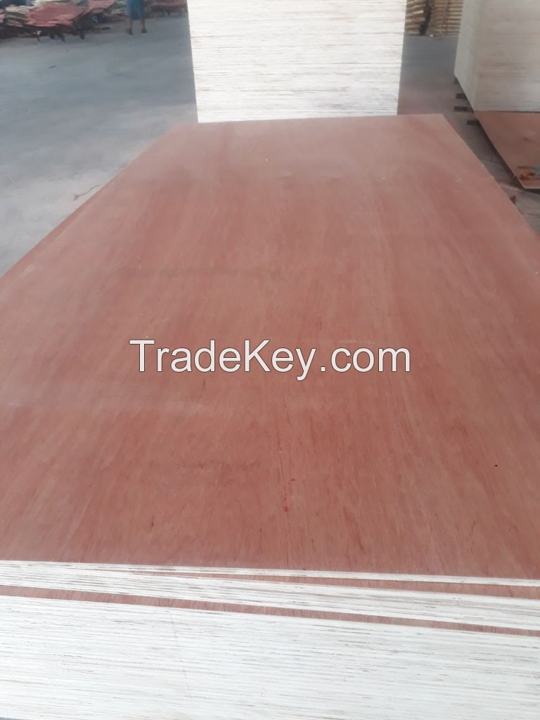 Plywood furniture grade with 100% eucalyptus core