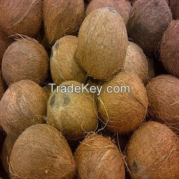 Fresh Deshusked,Semi Husked Coconut