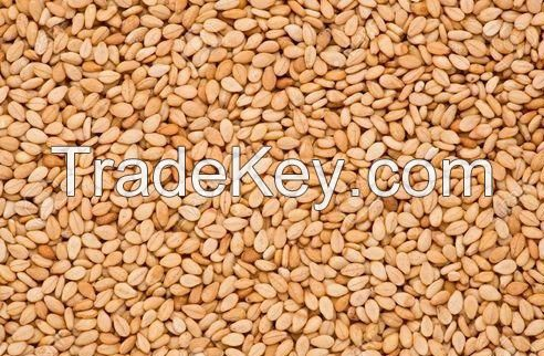 Best Quality Sesame seeds at Cheap Rates