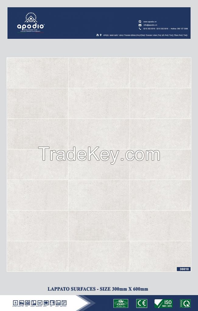 APODIO PORCELAIN TILE 300 x 600 - in Vietnam