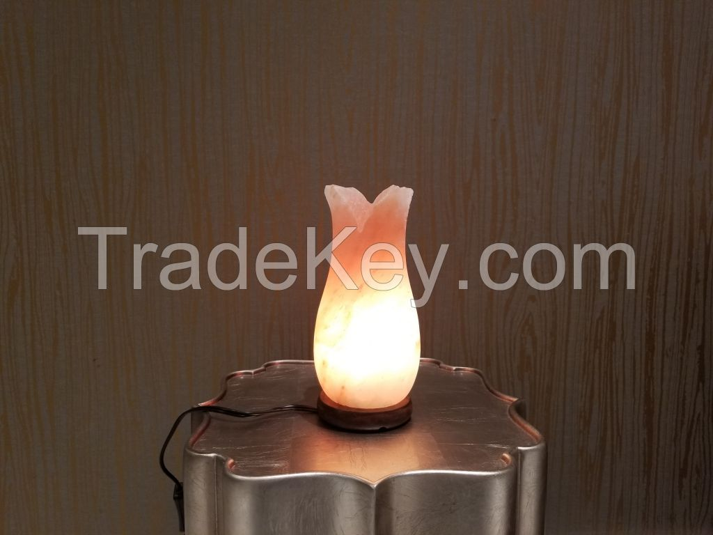 Himalayan pink salt lamps