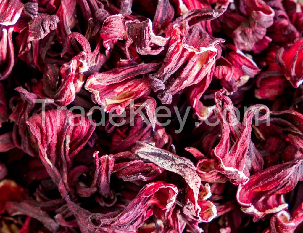 Dried Hibiscus Flower | Wholesale Price