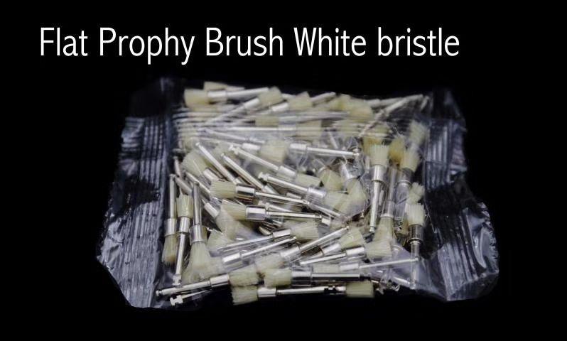 Dental Polishing Prophy Brush