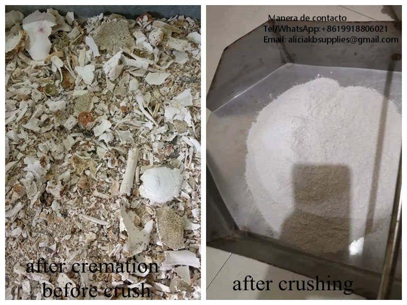 Trituradora de restos cremados humanos procesador acero inoxidable