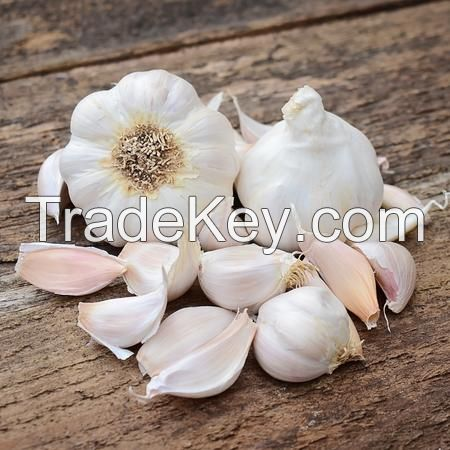 Garlic white