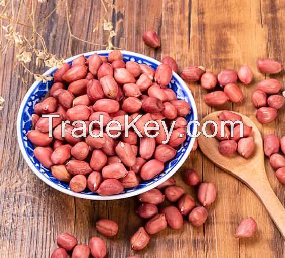 Peanut Kernels (High Quality)