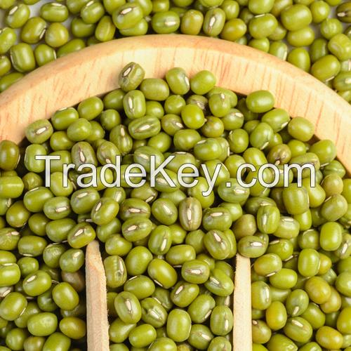 Indonesia High Quality Mung Bean