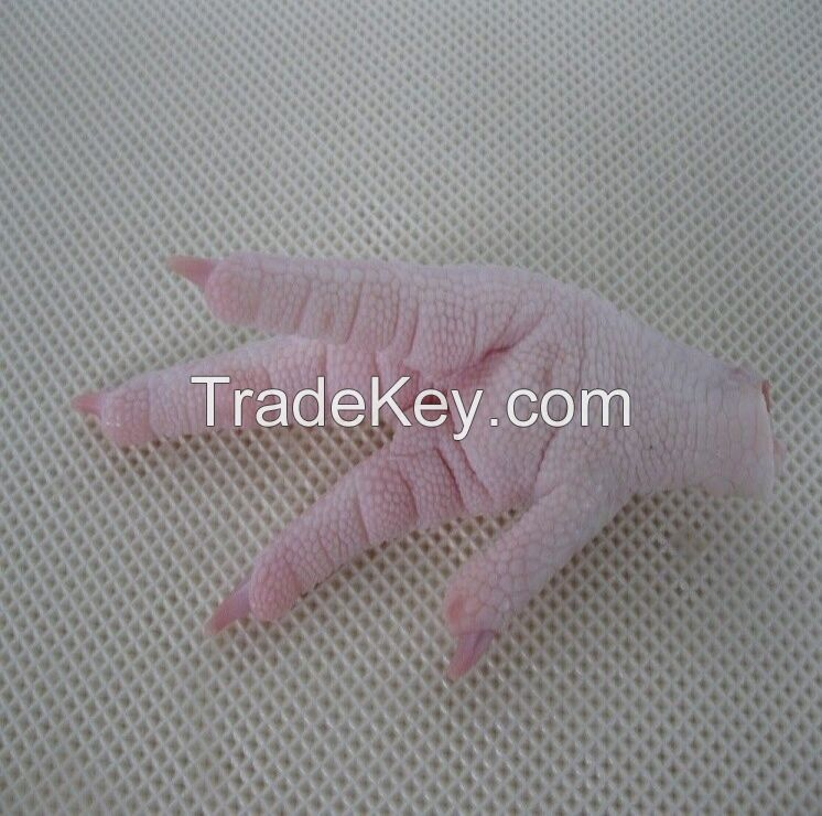 Brazilian Quality Halal Frozen Whole Chicken And Parts / Thighs / Feet / Paws / Drumsticks