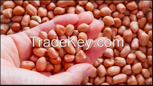 Peanuts and Peanuts oil