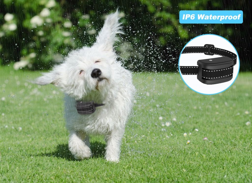 Rechargeable Dog Training Citronella Spray Anti Bark Control for dogs