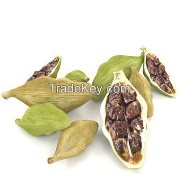 High Quality Vietnam Black Cardamom Good Price
