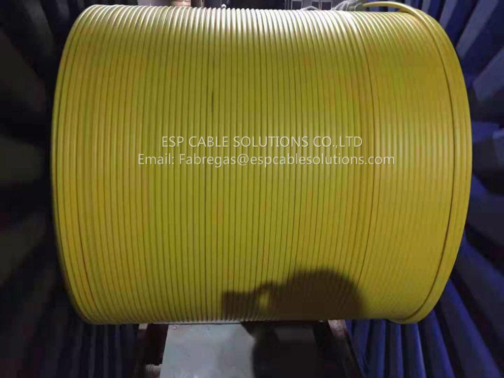 Downhole TEC Cable-Sensor Cable