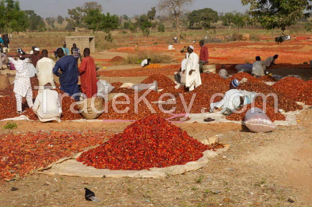 DRIED CHILLI PEPPER FROM NIGERIA