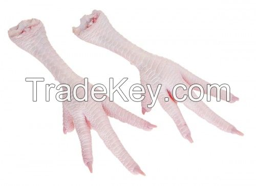 High Quality Frozen Chicken Feet for Sale