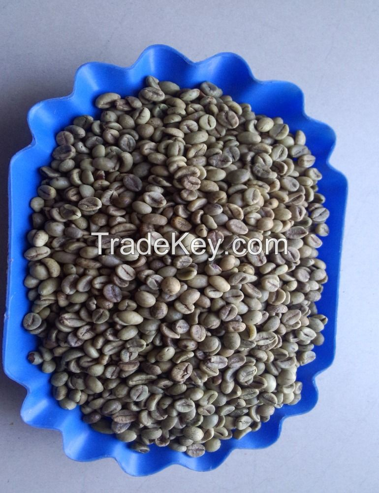 Arabica and Robusta export quality coffee bean