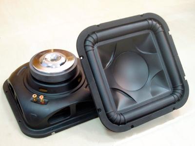 12-Inch Subwoof Car Speaker with 300W Maximum Power