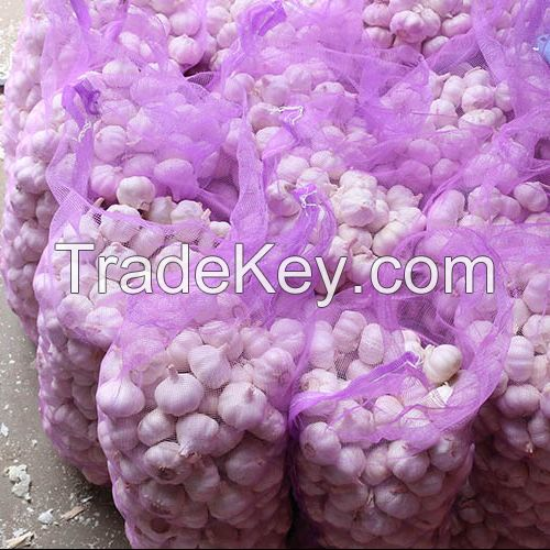 High Quality China White Fresh Garlic, White Garlic