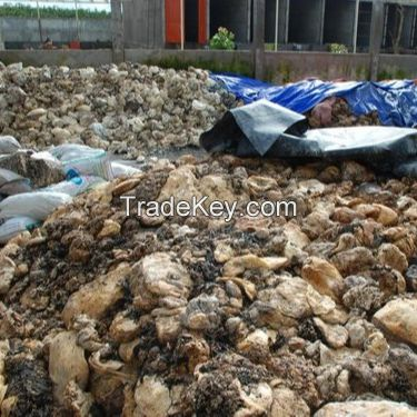 Natural Rubber Cup Lump  Wholesale Suppliers Online
