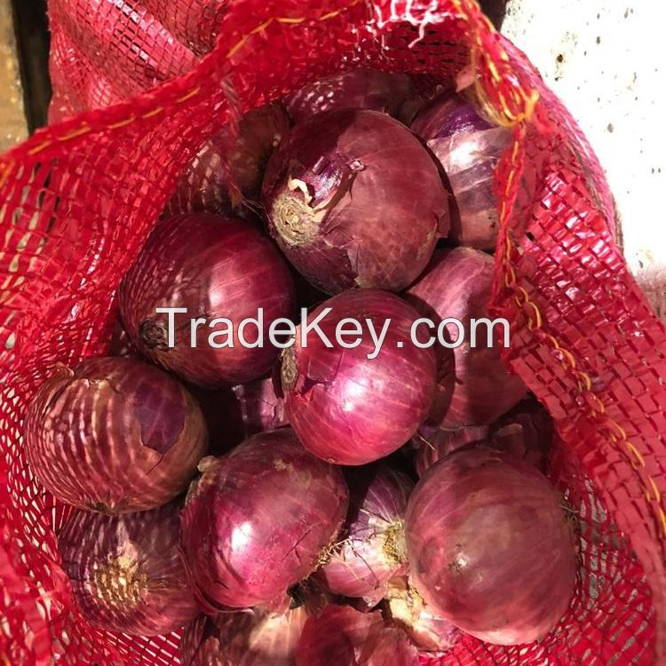Fresh Onion Red & White /Redish pink natural big size ONION 50MM