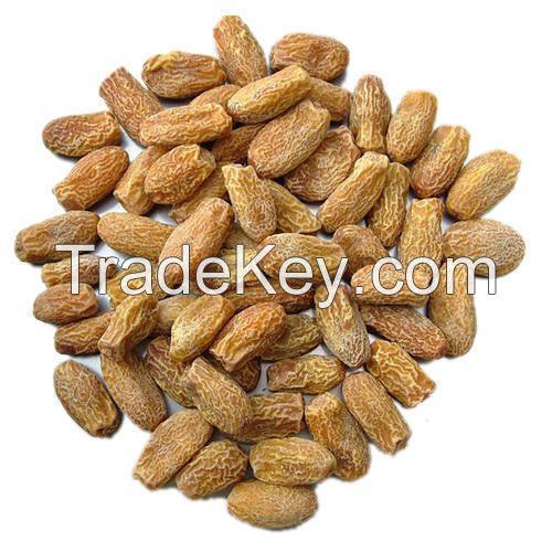 Fresh Dried Dates