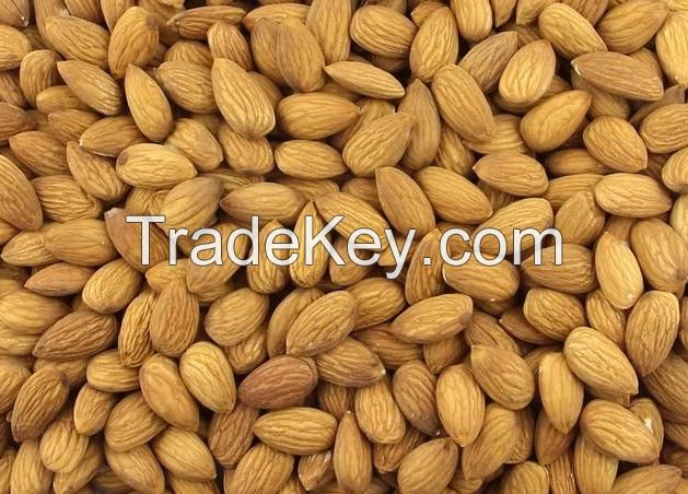 Raw Sweet Almond Nuts