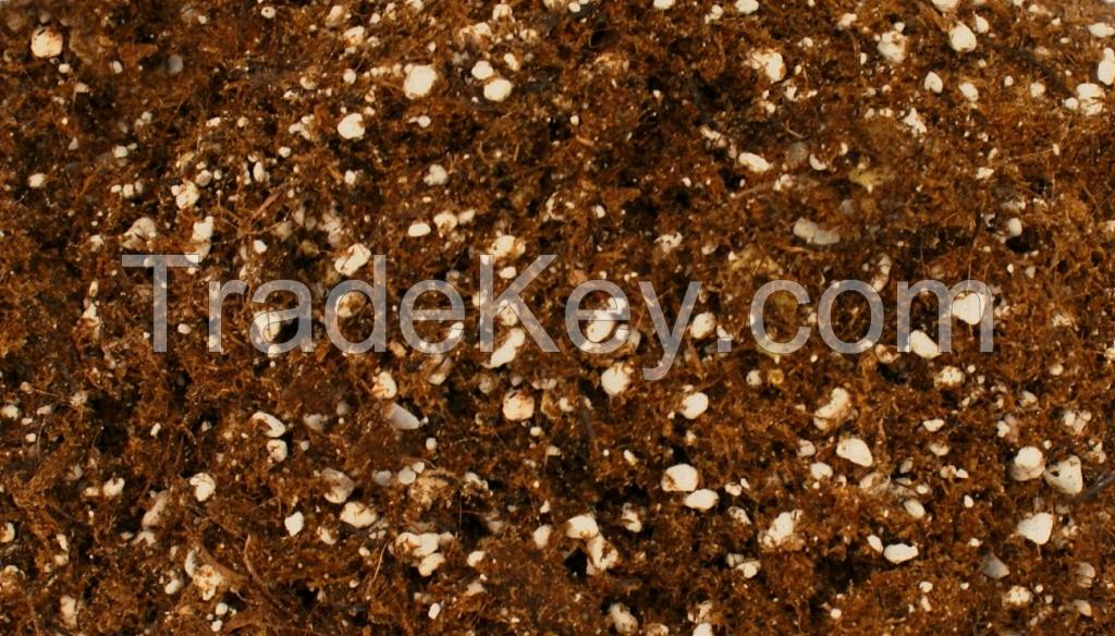 QUALITY CHEAP BONSAI GRASS VEGETABLE FLOWER POTTING SOIL COCO PEAT SUBSTRATE COIR PITH GREENHOUSE GARDEN LANDSCAPE POTTING MIX