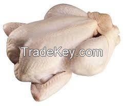 Top Quality Halal Frozen Chicken / Beef/ Goat/ Lamb Meat