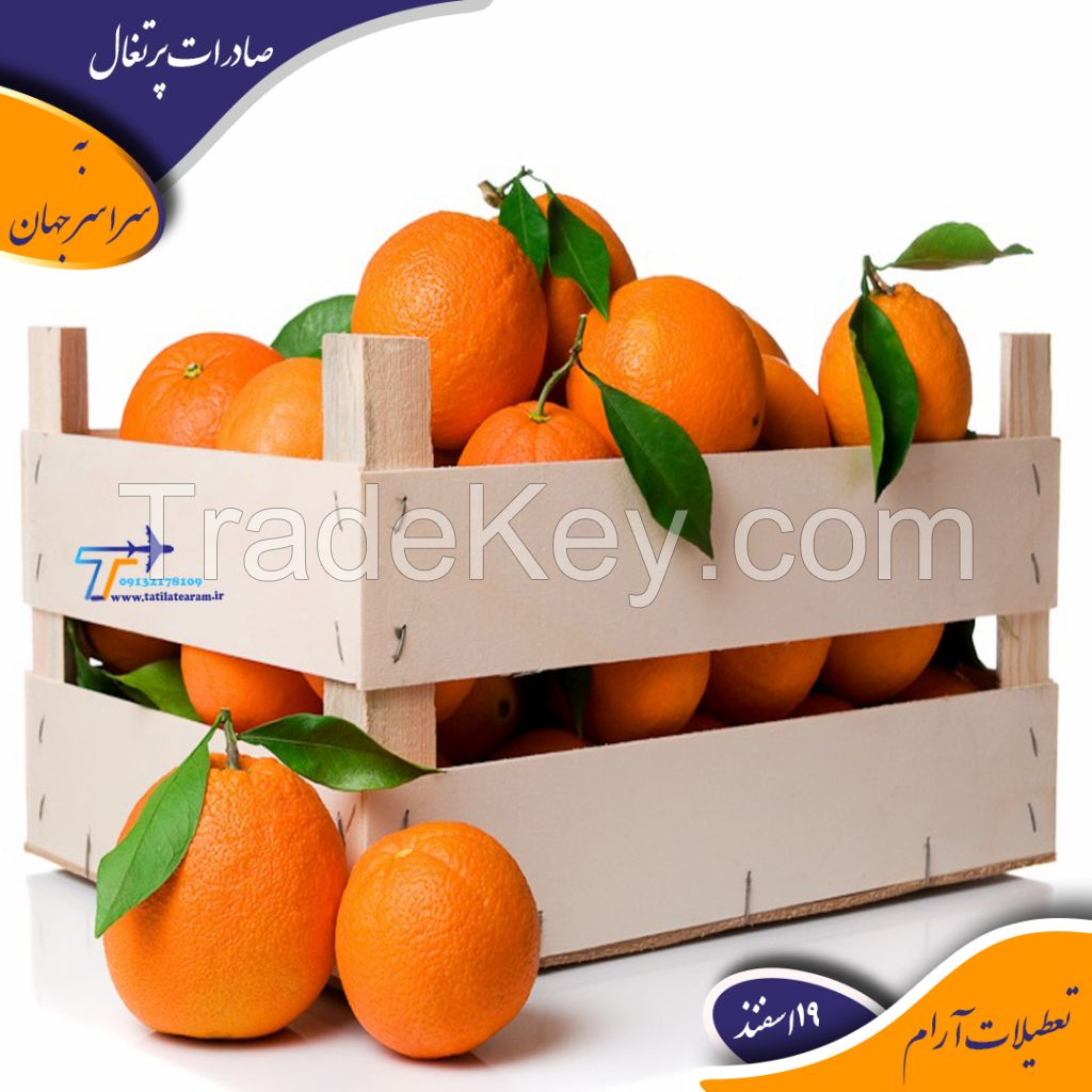 export of fresh fruits and vegetables