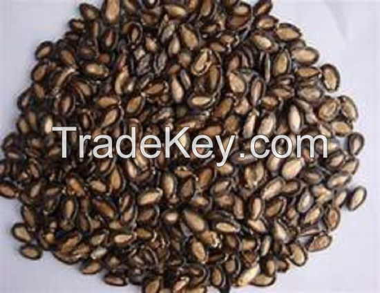Dry Black Water Melon Seeds
