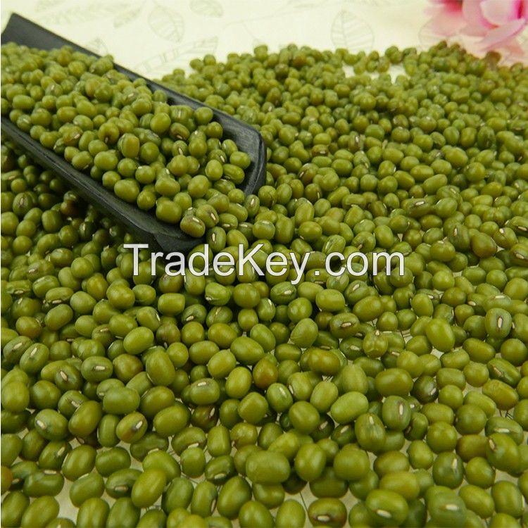 Moong Dal / Mung beans