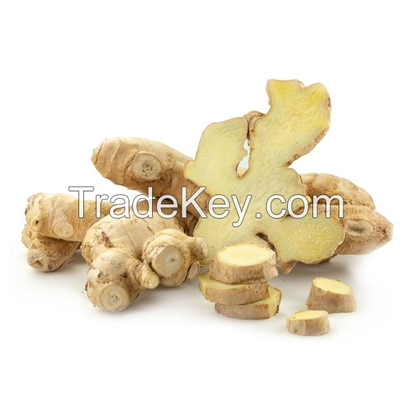 Fresh Ginger Available for Sale