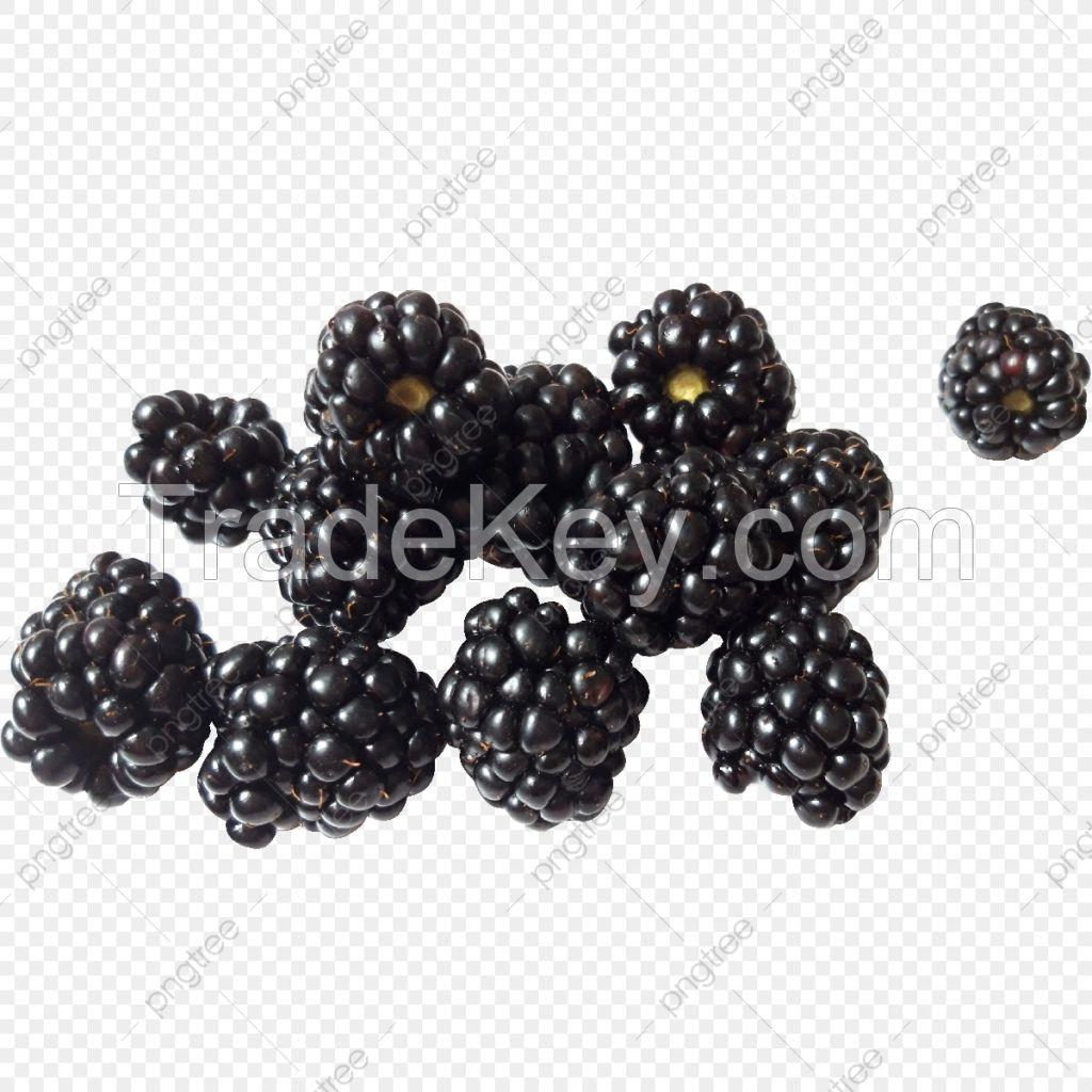 frozen blackberry fruit