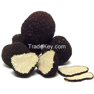 White and Black truffle, fresh truffle