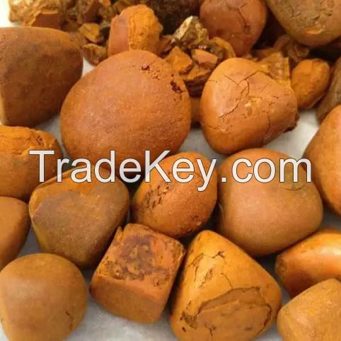 Cattle Gallstones and Cow Gallstones