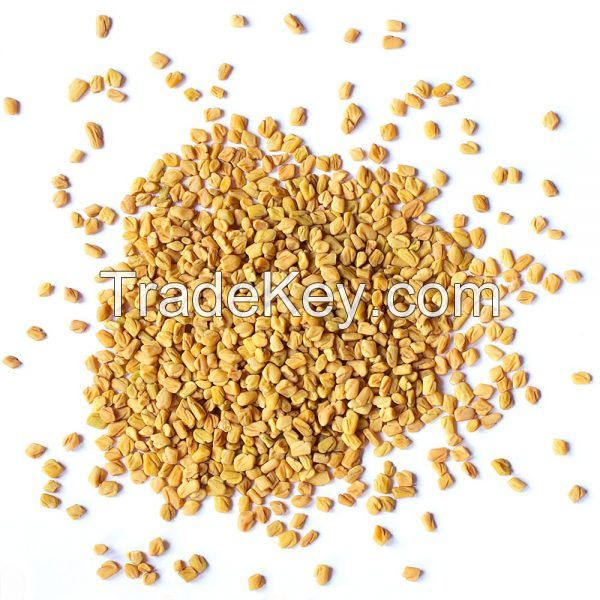 Organic Purify Fenugreek Seeds