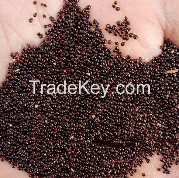 amaranth seeds