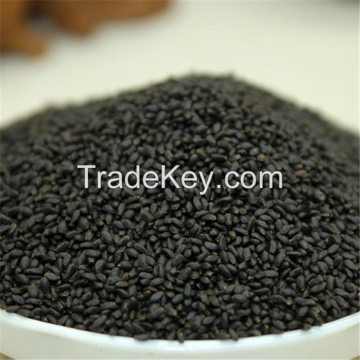 basil tukmaria seed