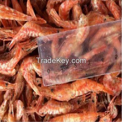 Hot sale dried shrimp