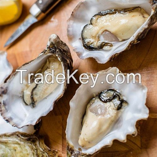6-8mm wholesale wish oyster nearly round pearl oysters with wish pearls inside