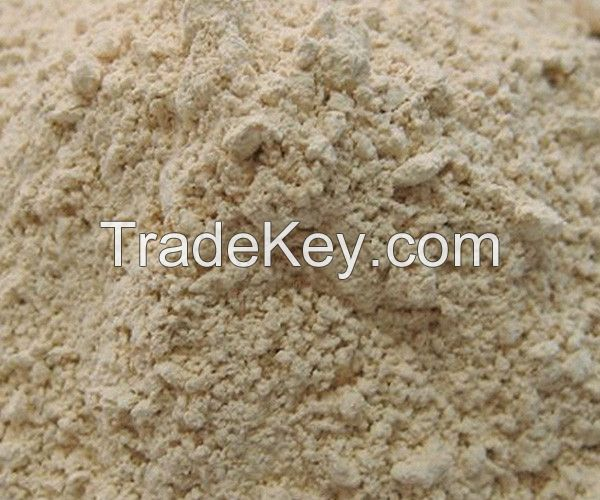 Dehydrated Garlic Powder for sale
