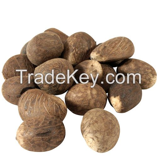Best quality Dried tagua nuts