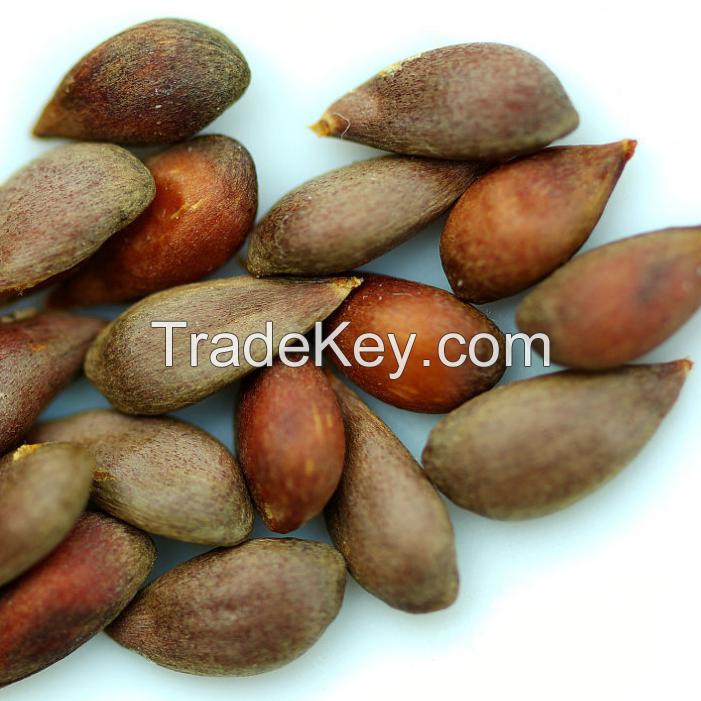 Quality Apple seeds