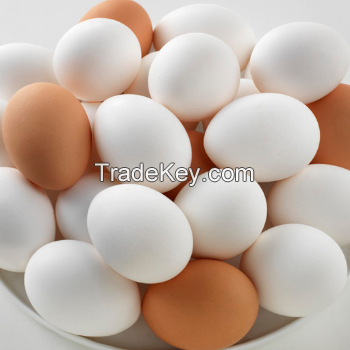 PREMIUM QUALITY WHITE CHICKEN EGGS