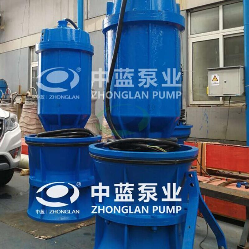 Pitshaft Axial- flow Pump